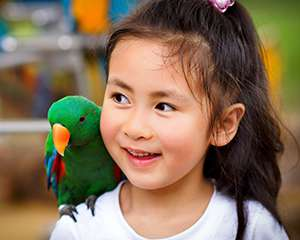 Photo of a little girl smiling with a parrot on her shoulder